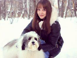 Nos chiens face à l'hiver : quelques conseils