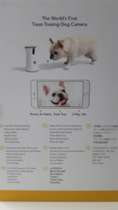 carton verso furbo dog camera