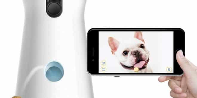Furbo Dog Camera Interactive : test, avis et remise de 40€ (code promo)