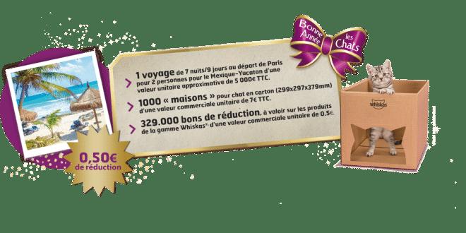 Jeu Whiskas «Bonne Année les Chats 2019 » : un voyage et de nombreux cadeaux à gagner