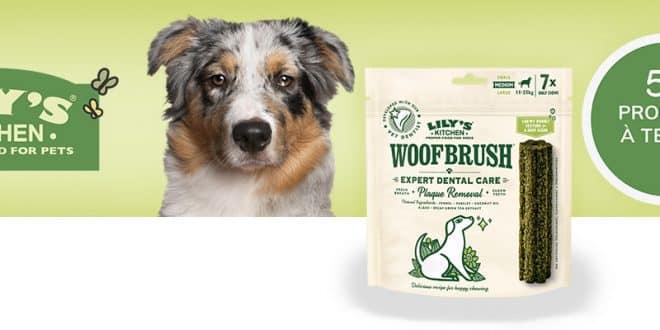 50 friandises Woofbrush de Lily's Kitchen à tester sur consoanimo.com