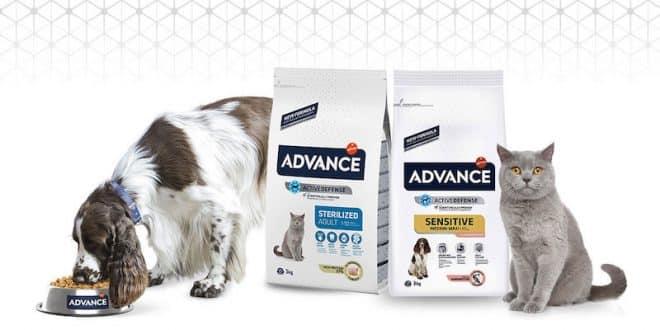 Des milliers de produits Advance pour chiens et chats à découvrir sur trnd.com
